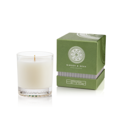 candle_solo_norwayspruce